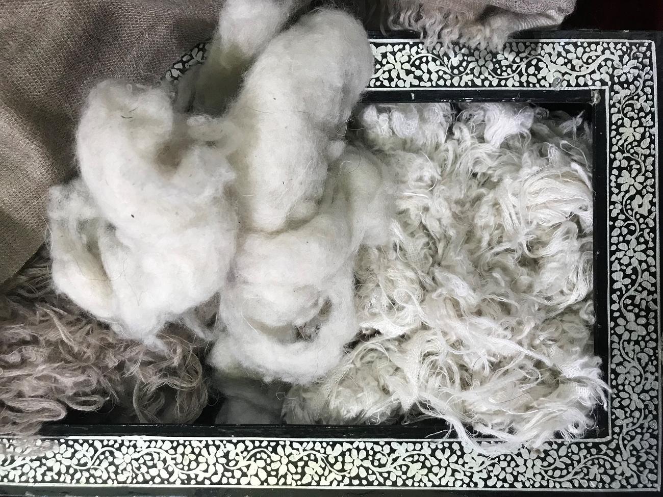 raw cashmere wool