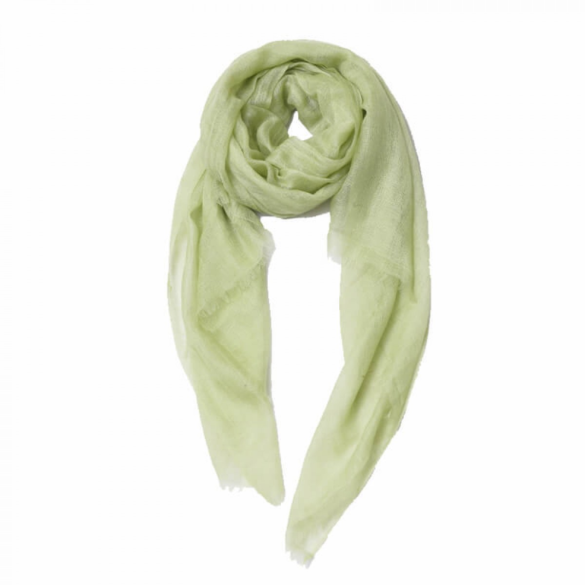 Sheer Pashmina Scarf -  Light Green